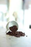 Feijões de café que caem de um copo branco Fotografia de Stock Royalty Free