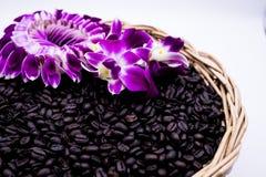 Feijões de café quentes com fumo e flor fotografia de stock