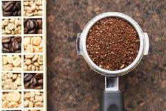 Feijões de café recentemente à terra em um filtro do metal e em feijões de café Fotos de Stock