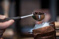 Feijões de café recentemente roasted em um fliter do café em uma mão do ` s do homem Fotografia de Stock