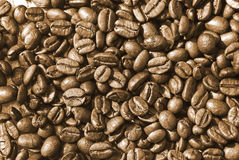 Feijões de café Roasted Fotografia de Stock