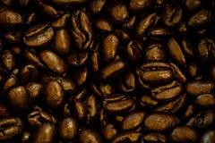 Feijões de café roasted close-up foto de stock royalty free