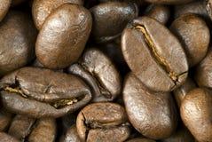 Feijões de café roasted frescos Fotografia de Stock