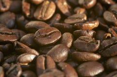 Feijões de café roasted frescos Fotografia de Stock Royalty Free