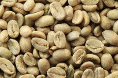 Feijões de café verdes Imagem de Stock