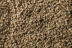 Feijões de café verdes Fotografia de Stock Royalty Free