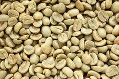 Feijões de café verdes, para fundos ou texturas Foto de Stock