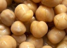 Feijões de Chick Peas/Garbonzo Fotografia de Stock Royalty Free