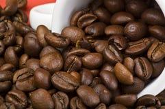 Feijões de Coffe Foto de Stock