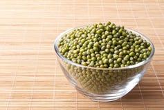 Feijões de mung verdes Foto de Stock