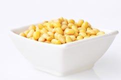 feijões de soja Imagens de Stock