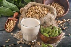 Feijões de soja e leite de soja fotografia de stock royalty free
