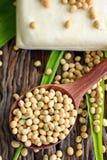 Feijões de soja e tofu Fotos de Stock Royalty Free