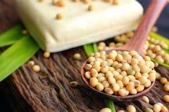 Feijões de soja e tofu Fotografia de Stock