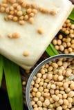 Feijões de soja e tofu Imagens de Stock Royalty Free