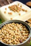 Feijões de soja e tofu Fotografia de Stock Royalty Free