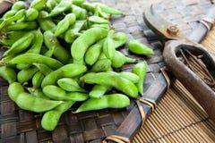 Feijões de soja novos colhidos frescos Fotos de Stock