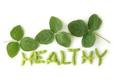 Feijões de soja saudáveis Imagem de Stock