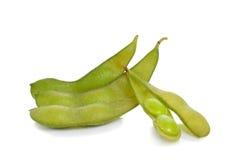 Feijões de soja verdes Imagem de Stock