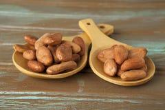 Feijões do cacau do chocolate Fotografia de Stock