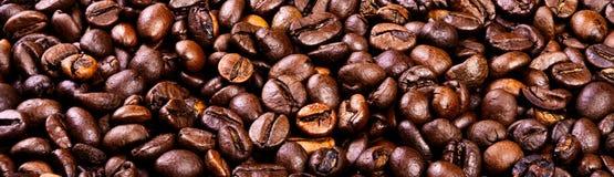 Feijões do café árabe preto Foto de Stock