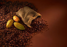 Feijões do chocolate Foto de Stock Royalty Free