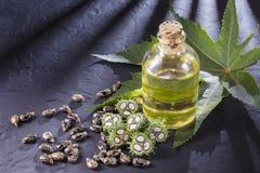 feijões e óleo de rícino Fotografia de Stock Royalty Free