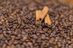 Feijões e canela de café Fotos de Stock Royalty Free