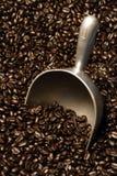 Feijões e colher de café Fotografia de Stock Royalty Free