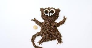 Feijões e copos de café que formam o macaco com cookie filme
