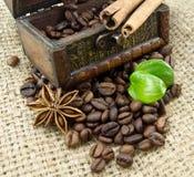 Feijões e especiarias de café Fotos de Stock