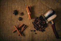 Feijões e especiarias de café Fotografia de Stock