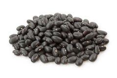 Feijões pretos Imagens de Stock