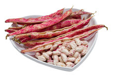 Feijões-roxos manchados vermelhos Fotografia de Stock