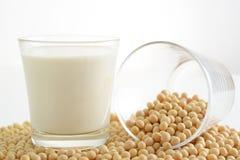 Feijões secados da soja com leite de soja imagens de stock