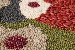 Feijões, variedade das leguminosa Fotografia de Stock