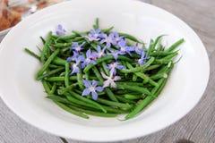 Feijões verdes franceses com as flores e alho azuis comestíveis do borage Imagem de Stock