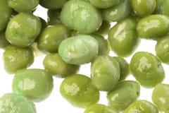 Feijões verdes processados macro Imagens de Stock Royalty Free