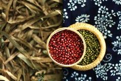 Feijões vermelhos e feijões verdes foto de stock royalty free