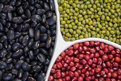 Feijões vermelhos, feijões verdes e feijões pretos no prato Fotografia de Stock Royalty Free