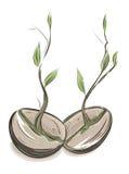 Feijões Sprouting Imagens de Stock