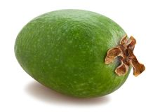 Feijoa photographie stock