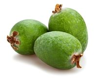 Feijoa photo stock