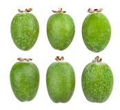 Feijoa images stock