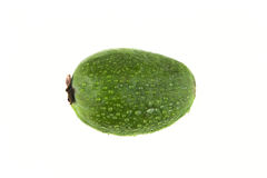 Feijoa Royalty Free Stock Photo
