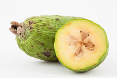 Feijoa Acca sellowiana Stock Images