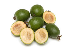 Feijoa  (Feijoa sellowiana) Stock Image