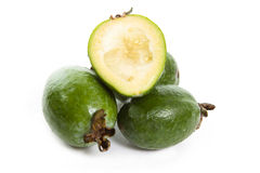 Feijoa Stock Images