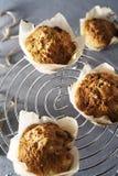 Feijoa muffin Royaltyfri Fotografi