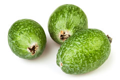 Feijoa three Stock Photo